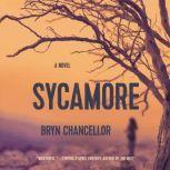 Sycamore, Bryn Chancellor