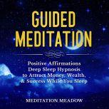 Guided Meditation Positive Affirmations Deep Sleep Hypnosis to Attract Money, Wealth, & Success While You Sleep, Meditation Meadow