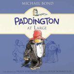 Paddington at Large, Michael Bond