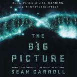 The Big Picture On the Origins of Life, Meaning, and the Universe Itself, Sean Carroll