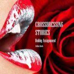 Crossdressing Stories Hubby Assignment, Hellen Heels