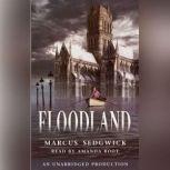 Floodland, Marcus Sedgwick