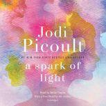 A Spark of Light, Jodi Picoult