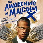 The Awakening of Malcolm X A Novel, Ilyasah Shabazz
