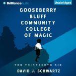 Gooseberry Bluff Community College of Magic, David J. Schwartz
