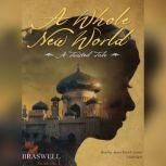 Mirror, Mirror A Twisted Tale, Liz Braswell