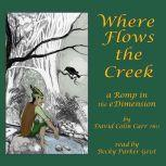 Where Flows the Creek: a Romp in the eDimension, David Colin Carr