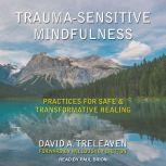 Trauma-Sensitive Mindfulness Practices for Safe and Transformative Healing, David A. Treleaven