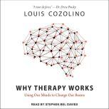 Why Therapy Works Using Our Minds to Change Our Brains, Louis Cozolino