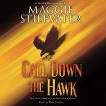 Call Down the Hawk, Maggie Stiefvater