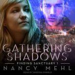 Gathering Shadows, Nancy Mehl