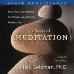 The Art of Meditation, Prof. Daniel Goleman, Ph.D.