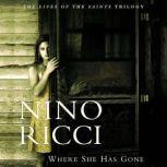 Where She Has Gone, Nino Ricci