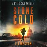 Stone Fall A Stone Cold Thriller, J.D.Weston