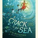 A Crack in the Sea, H. M. Bouwman