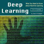 Deep Learning: What You Need to Know about Machine Learning, David Feldspar