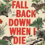 Fall Back Down When I Die, Joe Wilkins