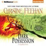 Dark Possession, Christine Feehan