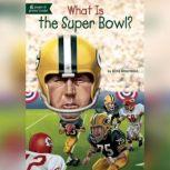 What Is the Super Bowl?, Dina Anastasio