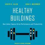 Healthy Buildings How Indoor Spaces Drive Performance and Productivity, Joseph G. Allen