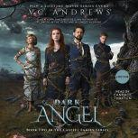 Dark Angel, V.C. Andrews