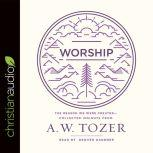 Worship The Reason We Were Created-Collected Insights from A. W. Tozer, A. W. Tozer
