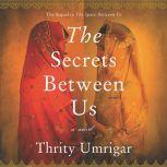 The Secrets Between Us, Thrity Umrigar