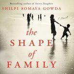 The Shape of Family A Novel, Shilpi Somaya Gowda