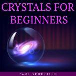 CRYSTALS FOR BEGINNERS, paul schofield