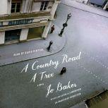 A Country Road, A Tree, Jo Baker