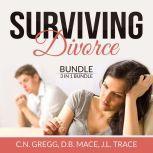 Surviving Divorce Bundle: 3 in 1 Bundle, Divorce Made Simple, Divorce Poison, and Children and Divorce, C.N. Gregg