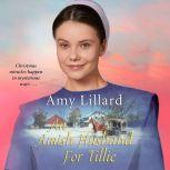 Amish Husband for Tillie, An, Amy Lillard