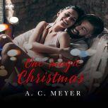 One Magic Christmas, A. C. Meyer