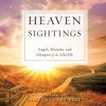Heaven Sightings Angels, Miracles, and Glimpses of the Afterlife, Tim Lundeen