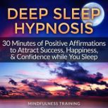 Money Magnet Hypnosis Manifest Wealth, Money, & Attract Abundance While You Sleep, Mindfulness Training