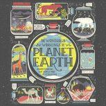 The Wondrous Workings of Planet Earth Understanding Our World and Its Ecosystems, Rachel Ignotofsky