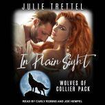 In Plain Sight, Julie Trettel