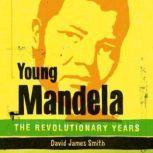 Young Mandela The Revolutionary Years, David James Smith