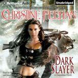 Dark Slayer, Christine Feehan