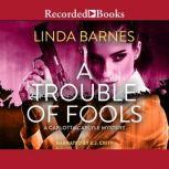 A Trouble of Fools, Linda Barnes