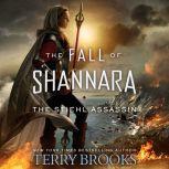 The Stiehl Assassin, Terry Brooks