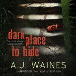 Dark Place to Hide, A J Waines