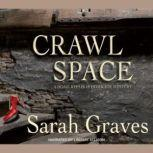 Crawlspace, Sarah Graves
