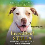Incredibull Stella How the Love of a Pit Bull Rescued a Family, Marika Meeks