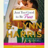 Just Too Good to Be True, E. Lynn Harris
