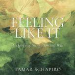 Feeling Like It A Theory of Inclination and Will, Tamar Schapiro