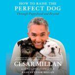 How to Raise the Perfect Dog Through Puppyhood and Beyond, Cesar Millan