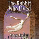 The Rabbit Who Lived, Nelson Chereta