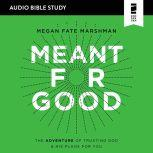 Believing Jesus Audio Study A Journey Through the Book of Acts, Megan Fate Marshman