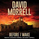 Before I Wake, David Morrell